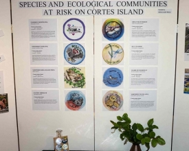 Ecosystems and Species at Risk